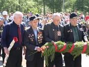 Аллея Ветеранов. Фото А.Забава
